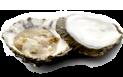 oesters-menu